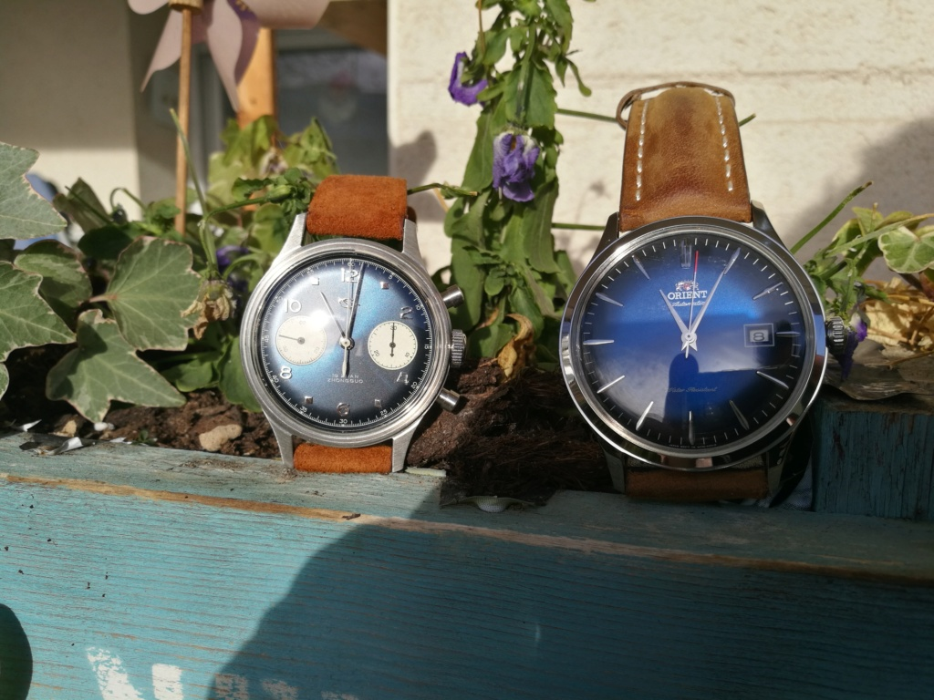 creationwatches - orient bambino V4 - Page 22 Img_2016