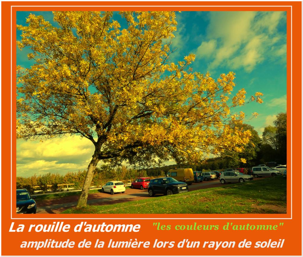 Le début de l'automne 3 Aa_amp10