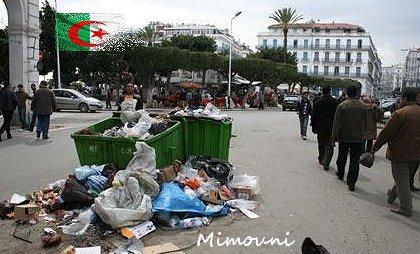 tamazight - tamazight biz emerge sur la toile Alger-10