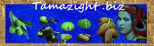 tamazight biz emerge sur la toile Tamazi12