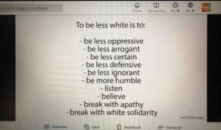 "Coca cola training program says ""be less white"" Nintch12"