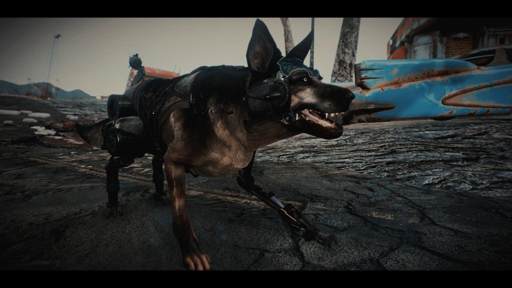 Fallout Screenshots XIII - Page 6 Fallou24