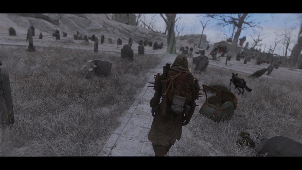 Fallout Screenshots XIV - Page 6 Scree116