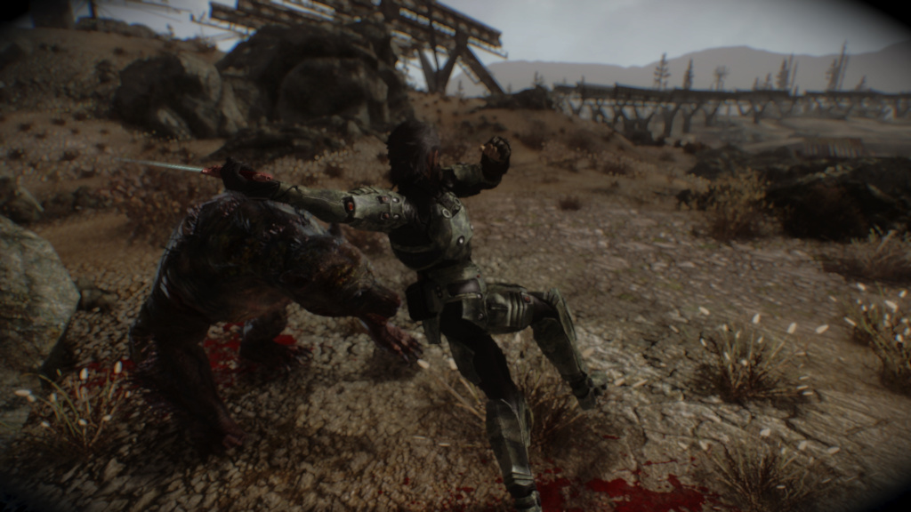 Fallout Screenshots XIV - Page 14 Scree130
