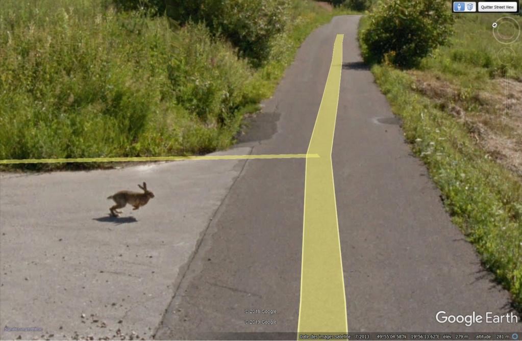 Le coup du lapin vu par la Google car... (Street View ) Lapin110