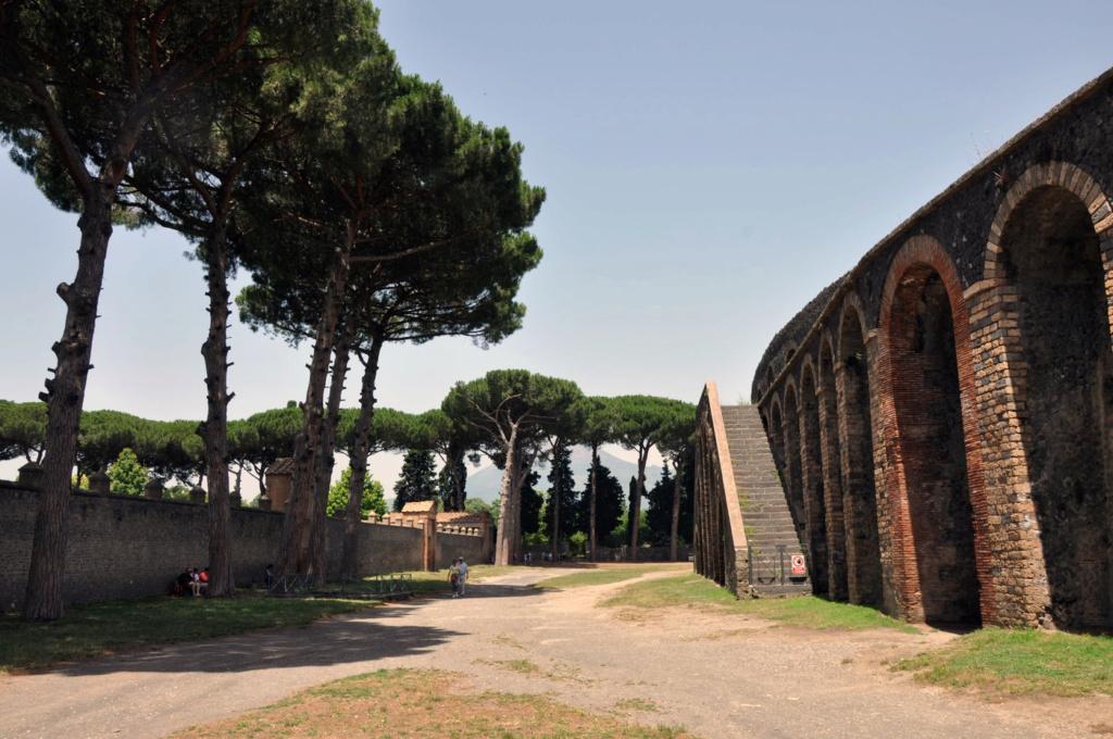 """Amphithéâtres romains : """"du pain et des jeux"""" - Page 2 Pomei510"""
