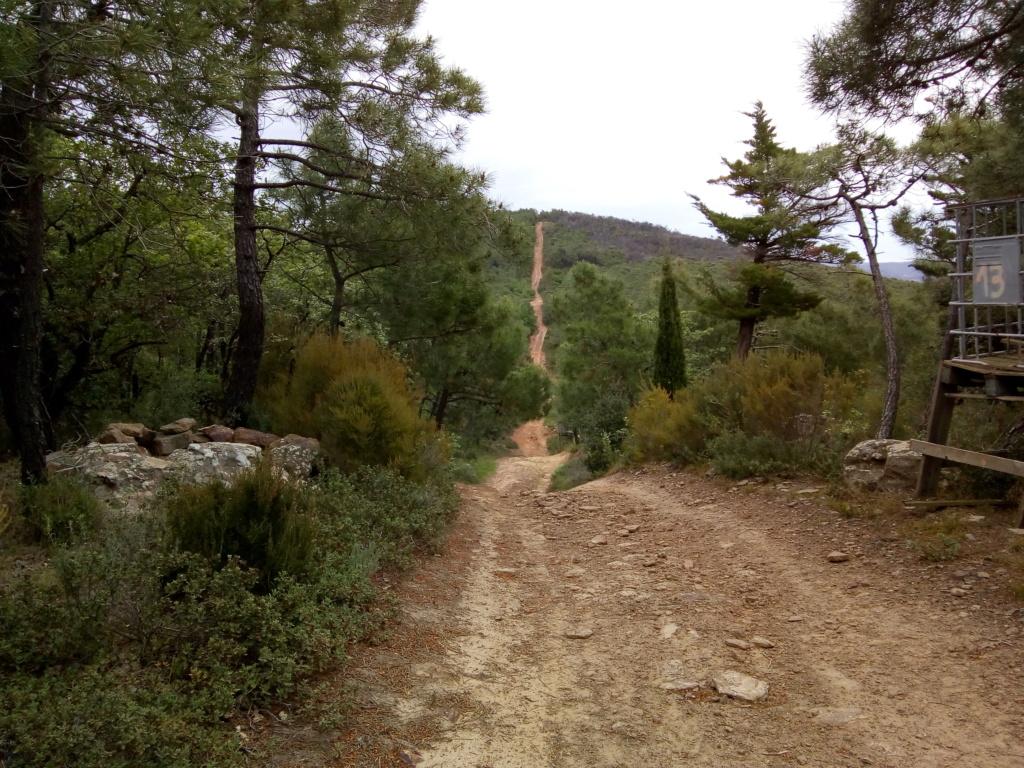 idée de petite sortie montagne noire et Corbières 13-14-15 mai - Page 2 Img_2013