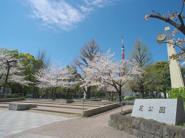 Music World 3 - Taka Shiba_10