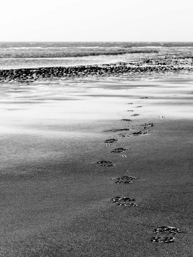 Walk on the beach 28007611