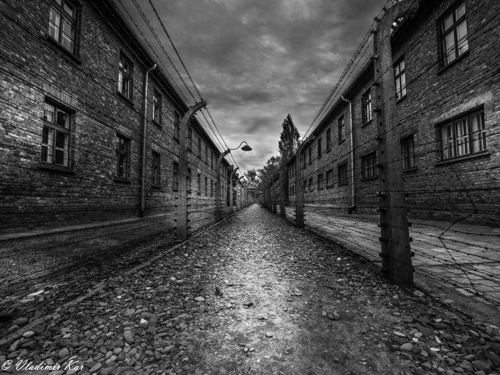 Auschwitz I, the blocks 33980010