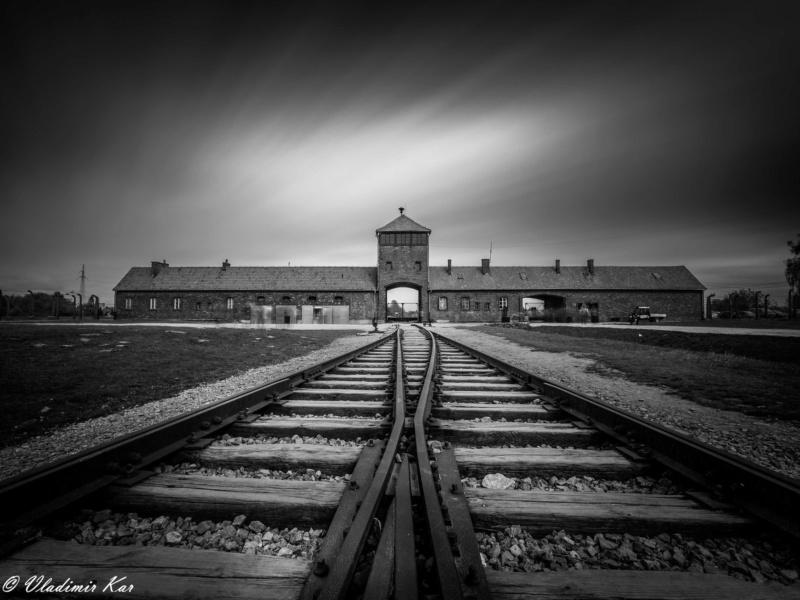 Auschwitz, Birkenau 47952410
