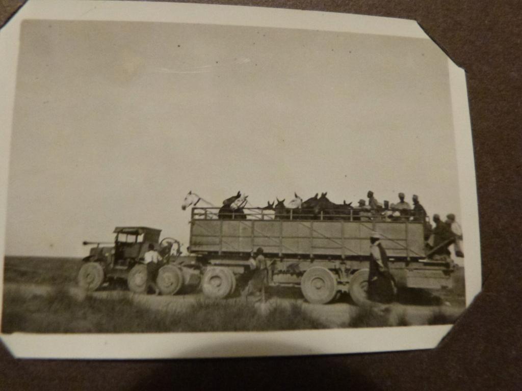 Album photo Maroc 1930, Couteau scout allemand, insignes , fanions ... P1080339