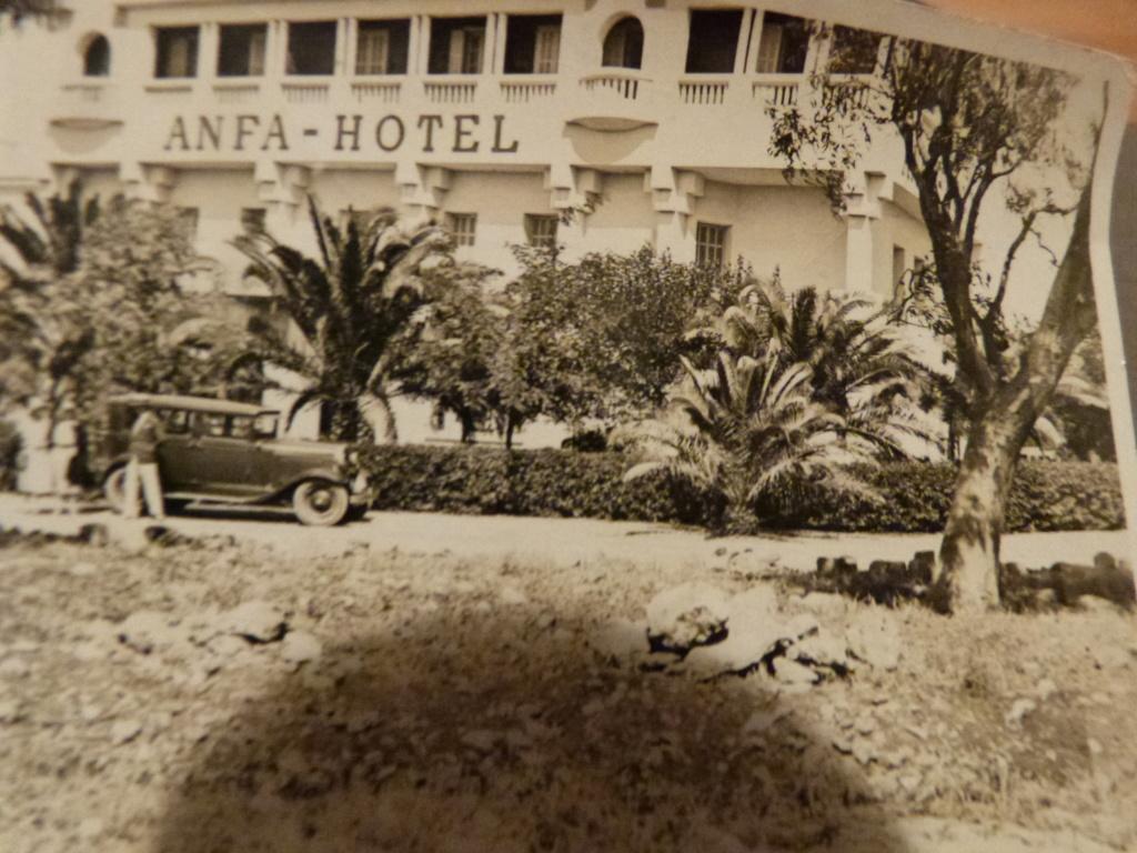 Album photo Maroc 1930, Couteau scout allemand, insignes , fanions ... P1080340