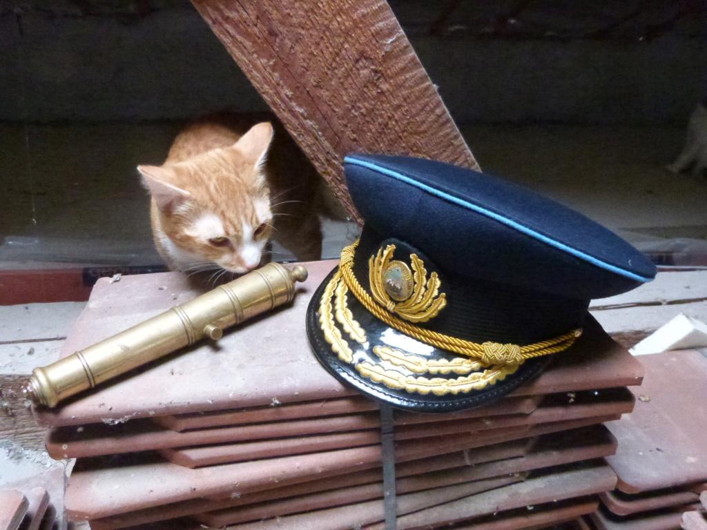 J'avais oublié ... casquette amiral roumain et petit canon marine P1080350