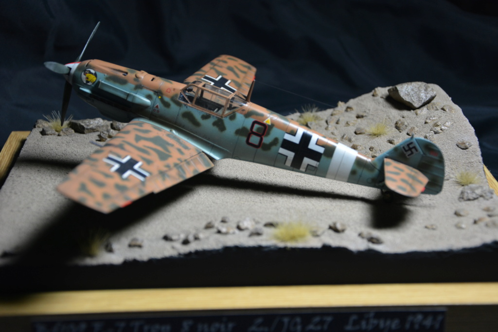 Bf109 E4/7 Trop 1/48 éduard Dsc_0127