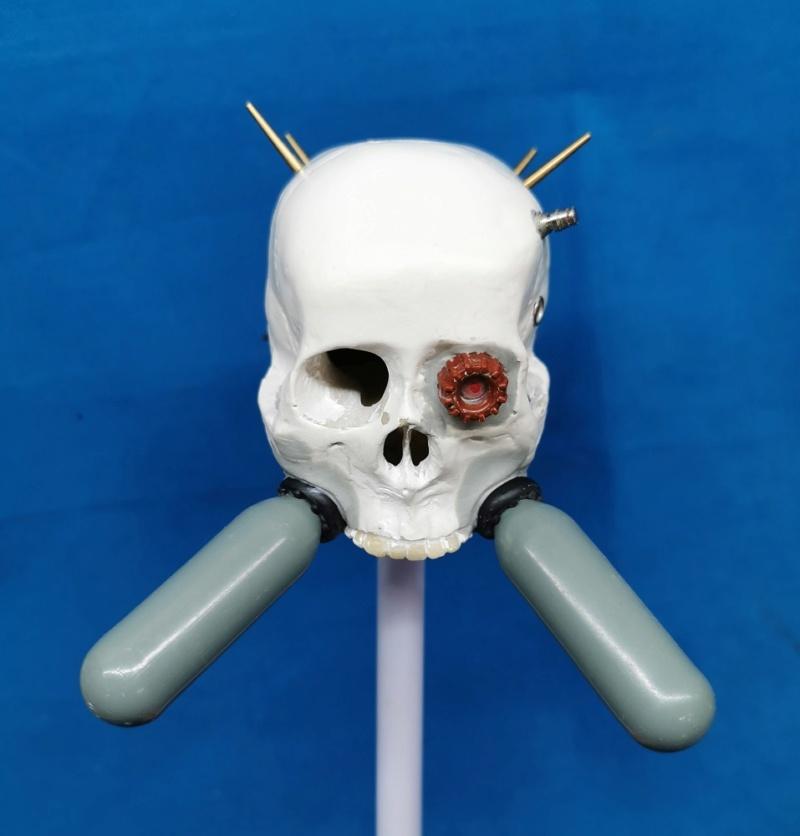(Denis Simon) servo skull Img_2033