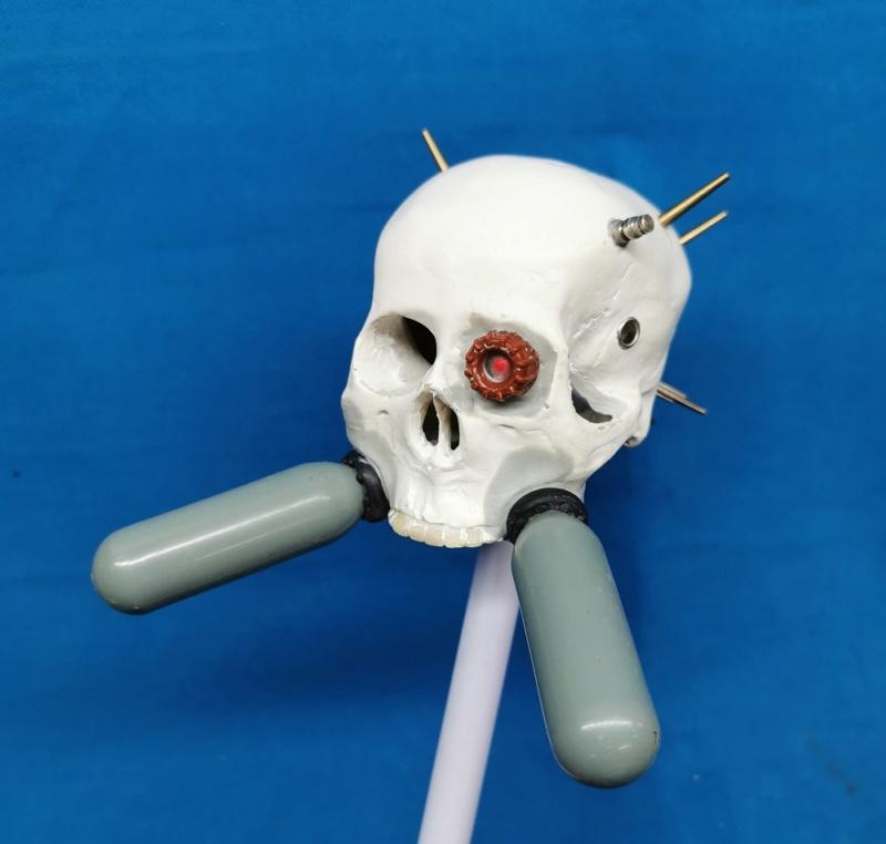 (Denis Simon) servo skull Img_2036