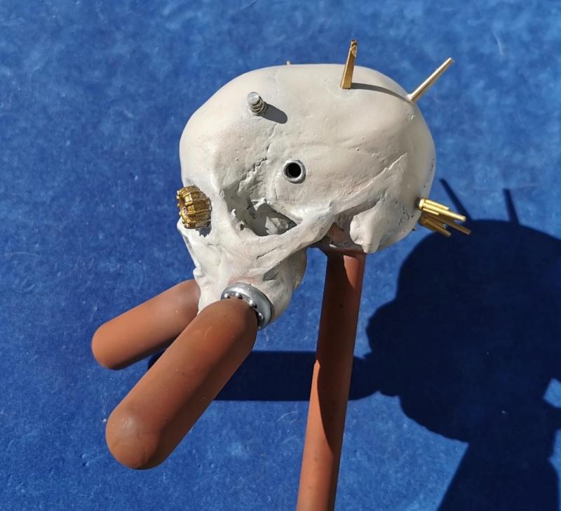 (Denis Simon) servo skull Img_2041