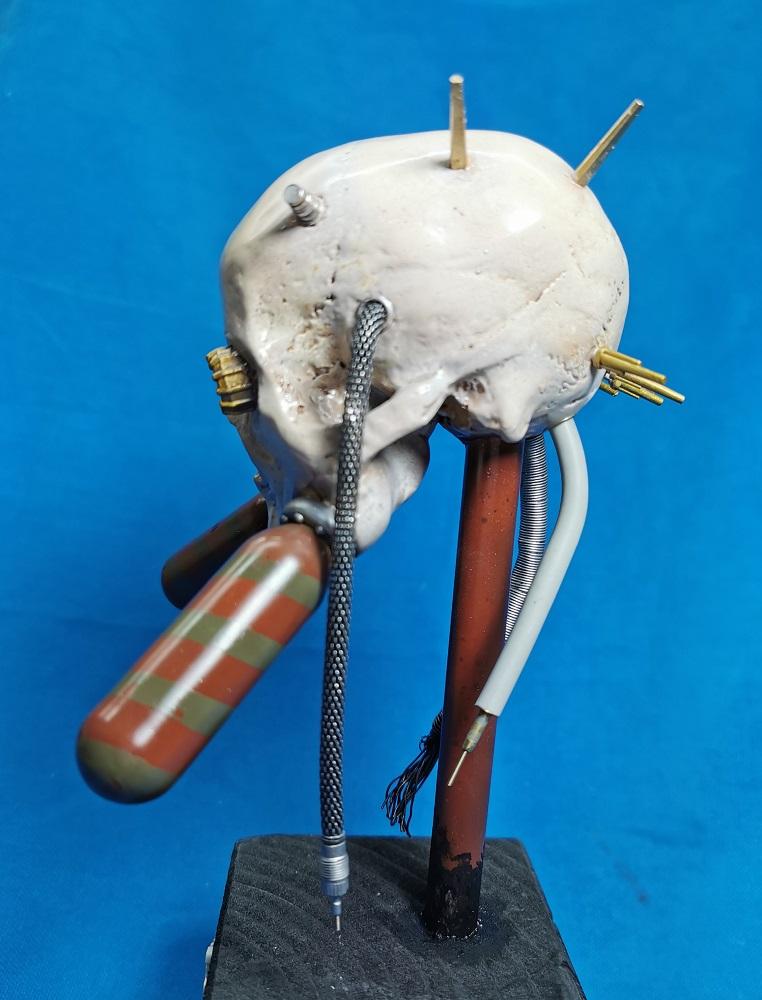 (Denis Simon) servo skull Img_2057