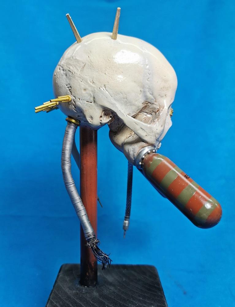 (Denis Simon) servo skull Img_2058