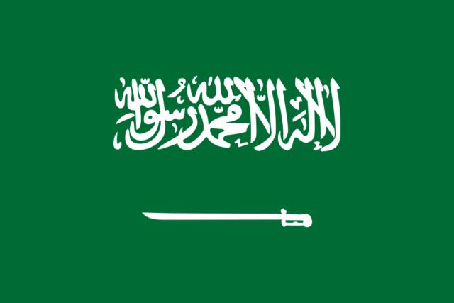 Guerre civile yéménite 1024px23