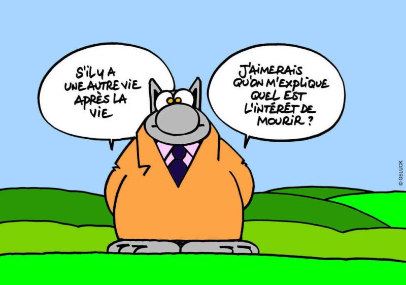 Topicaflood : trolls, viendez HS ! - Page 3 Chat_v10