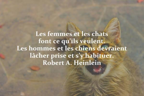 Topicaflood : trolls, viendez HS ! - Page 6 Femme_10