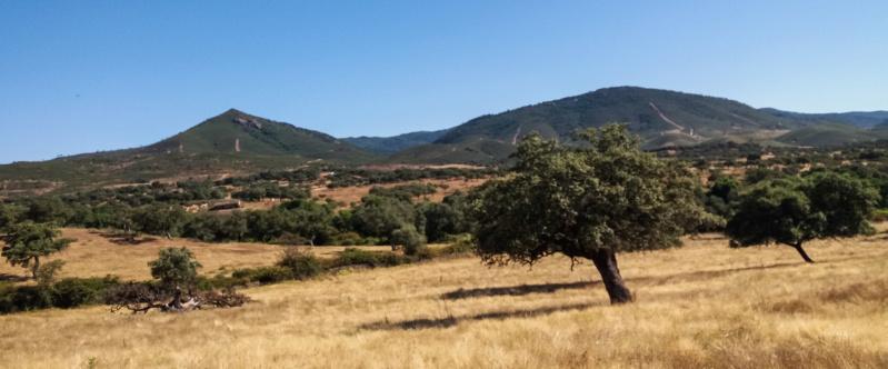 Sábado 20/06/2020 Nos vamos para Aracena y la Ermita de Santa Eulalia Arc_2013