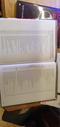 Livre sur les décorations allemandes - Page 2 20200616