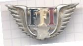 insigne ffi Ffi_in10