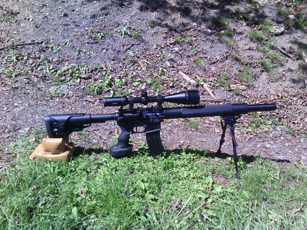 choix d'armes semi-auto 22Lr - Page 2 Ar_15_25
