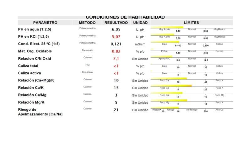 Análisis de suelo - consulta de encalado Campo de Calatrava (Ciudad Real) Diapos14