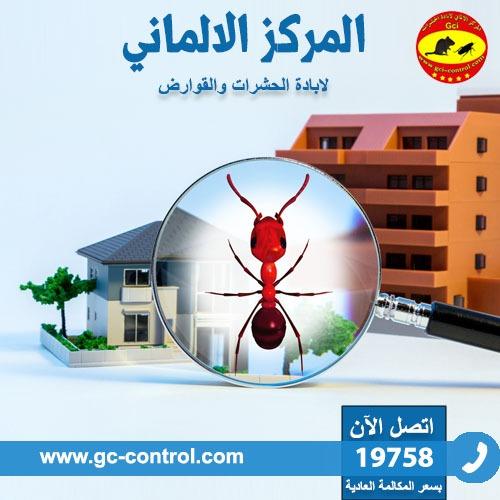 المركز الالماني لابادة الحشرات يقدم افضل طرق القضاء على الحشرات 2c9ea010