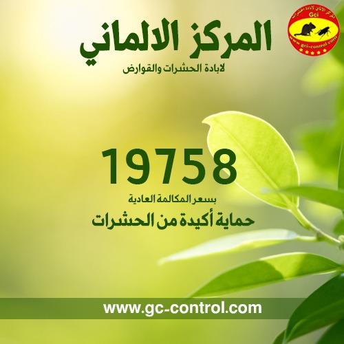 المركز الالماني لابادة الحشرات يقدم افضل طرق التخلص من جميع انواع الحشرات 8a2a7410