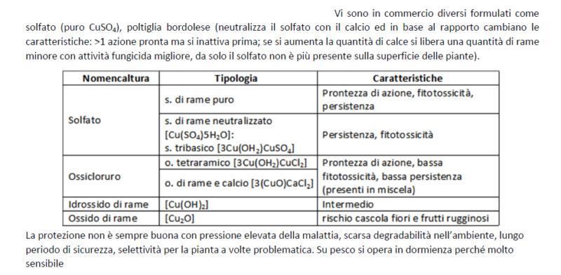 verderame e poltiglia bordolese - Pagina 5 Bordol10