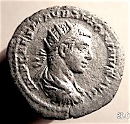 Jeune Caracalla ? Droit_10