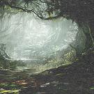 Forêt d'Onyx