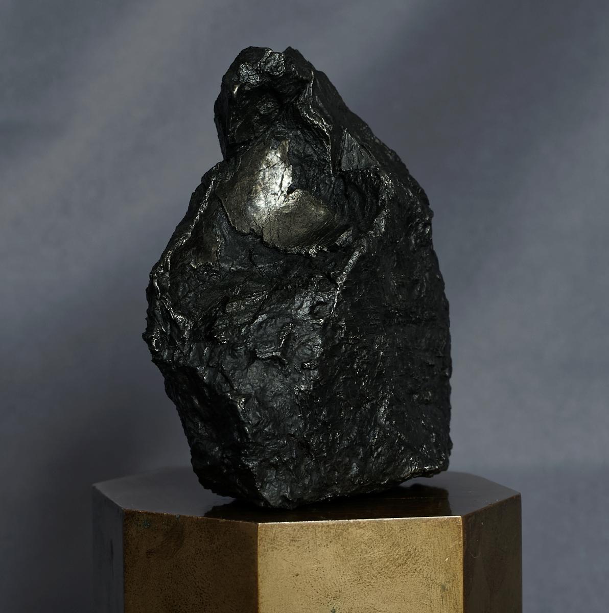 Widmanstätten, Neumann et cristallisation du fer _dsc3311