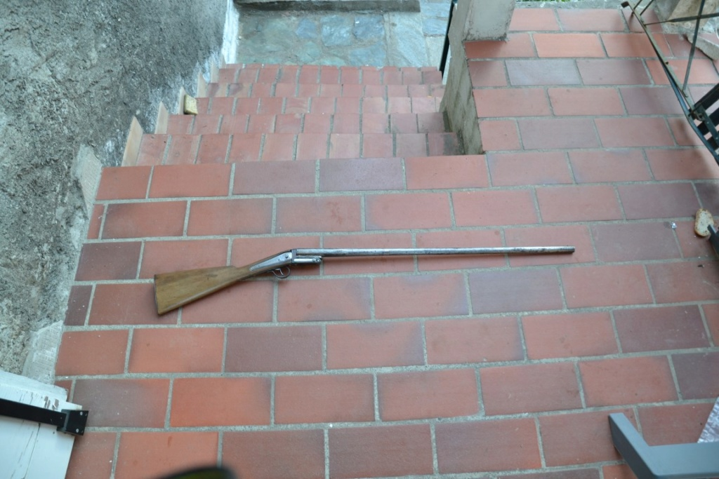 Identification carabine Carabi20