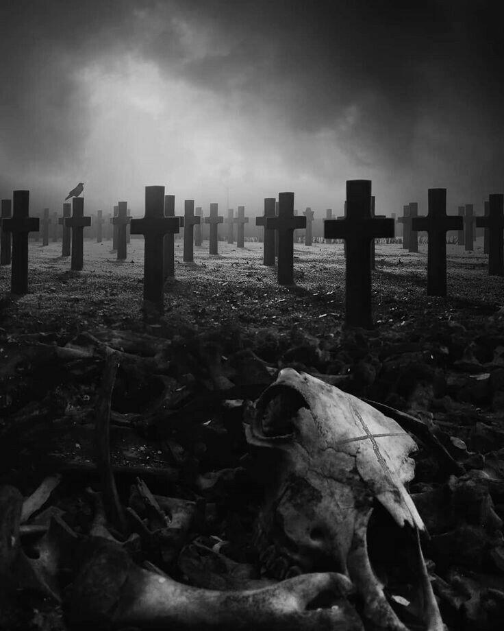Enterrada Viva - Relato de Terror Tumblr11