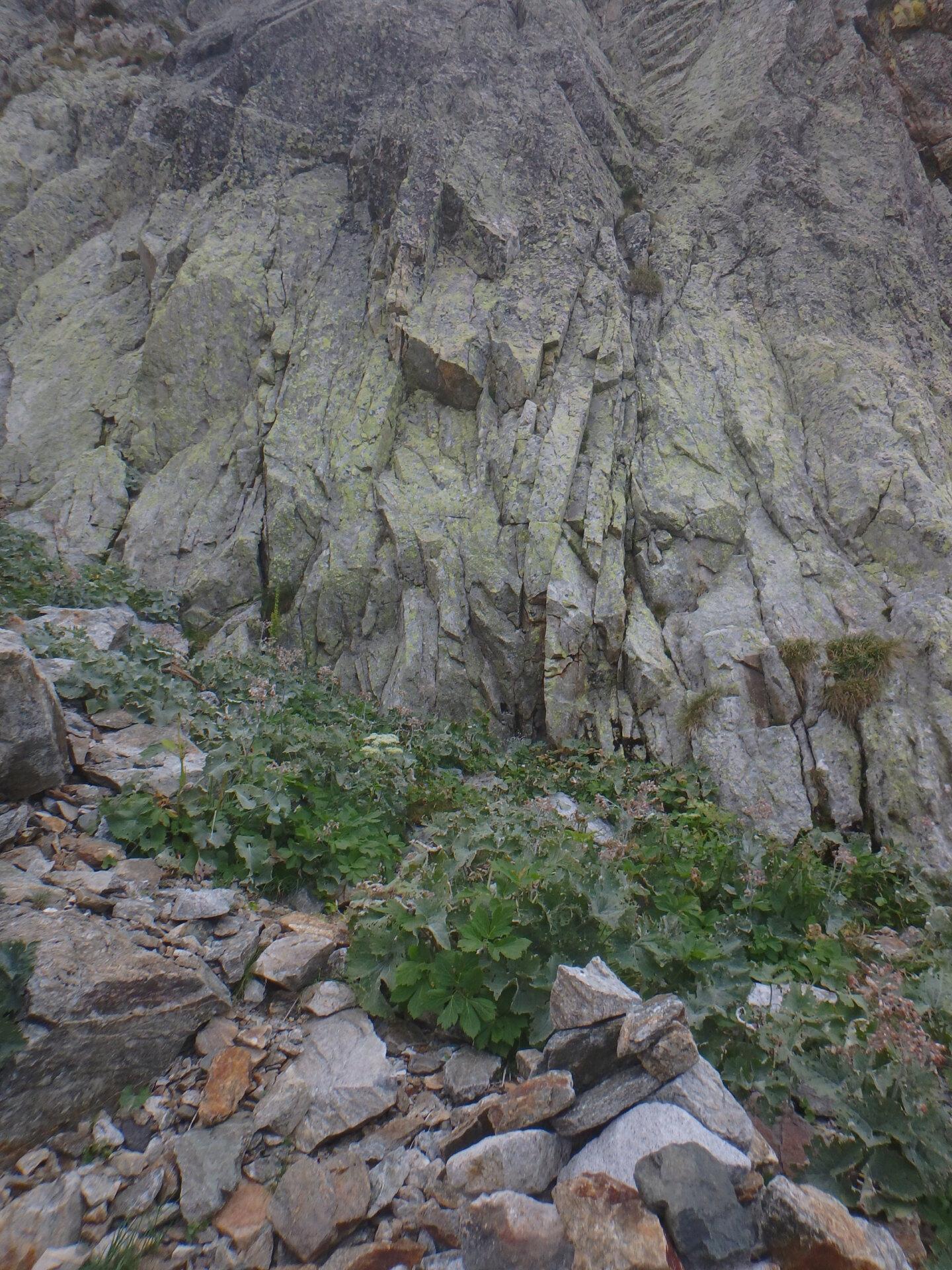 Val Gesso chapitre 1 : Eperon W au Cayre des Erps P8180411