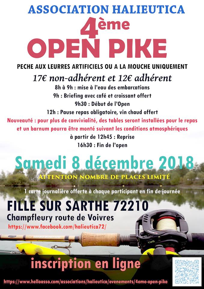 Open Pike 43112310
