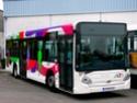 Photographies des autobus Alto - Page 6 Clich319