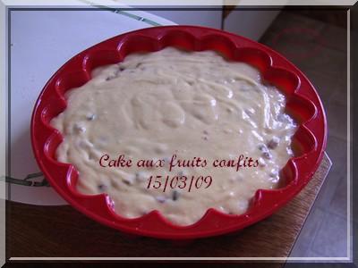 Gâteau aux fruits confits + photos 2009_021