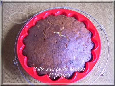 Gâteau aux fruits confits + photos 2009_022
