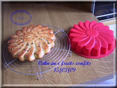 Gâteau aux fruits confits + photos 2009_023