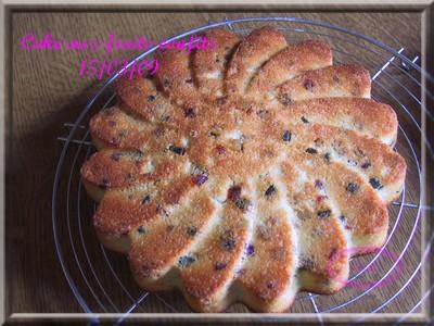Gâteau aux fruits confits + photos 2009_024