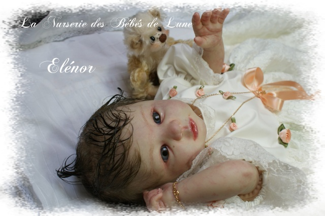 Galerie d'Elféesbabou : La nurserie des bébés de Lune. - Page 3 Dsc04110
