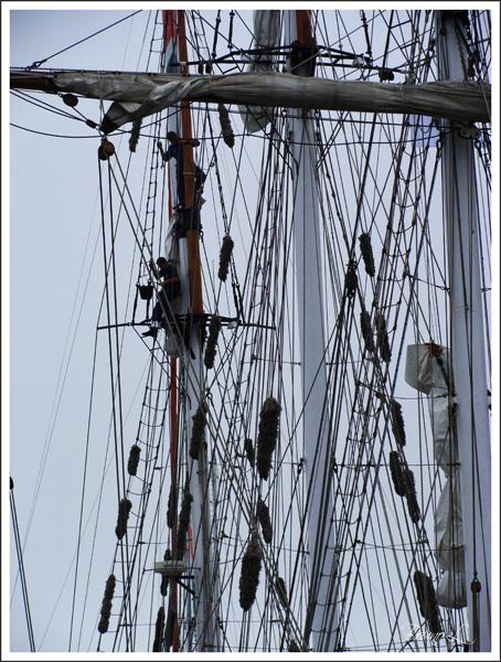[ Marine à voile ] La Boudeuse Voilie15