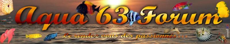 AQUA 63